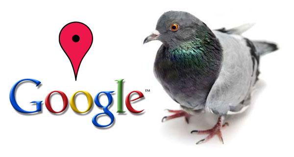 Did the Google Pigeon Drop One on You?