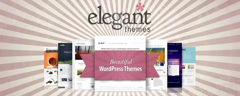 How to remove designed by Elegant Themes footer